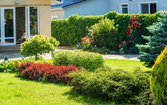 Réussir l'aménagement ou le réaménagement de son jardin