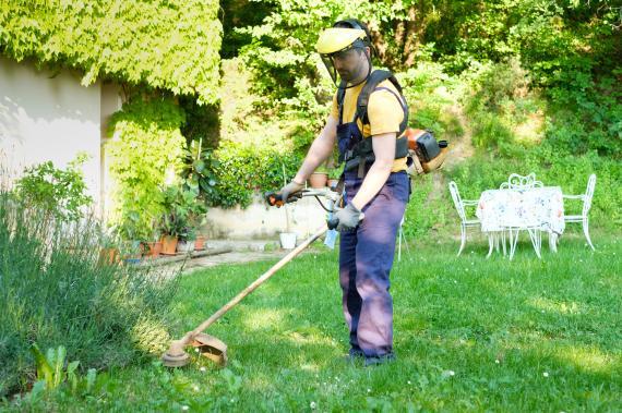 Broyeur de végétaux : Quelle utilité pour votre jardin?