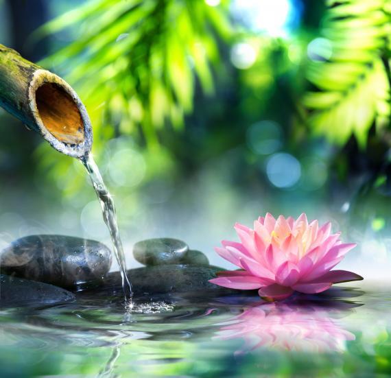 Douche ou douchette extérieure: confort et praticité