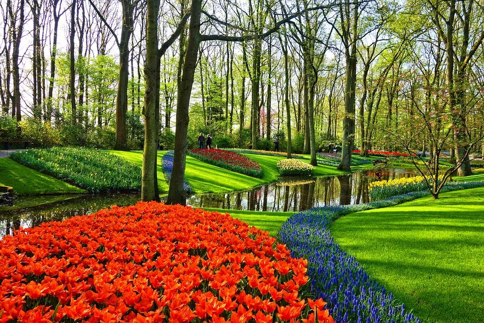 Le secret pour créer un beau jardin