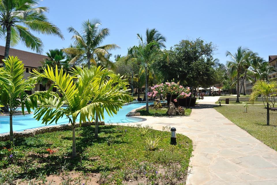 Nos conseils pour construire une piscine avec un jardin