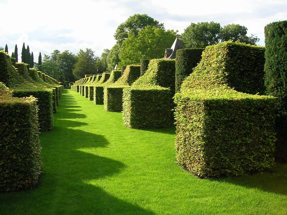 Les différents types de jardins