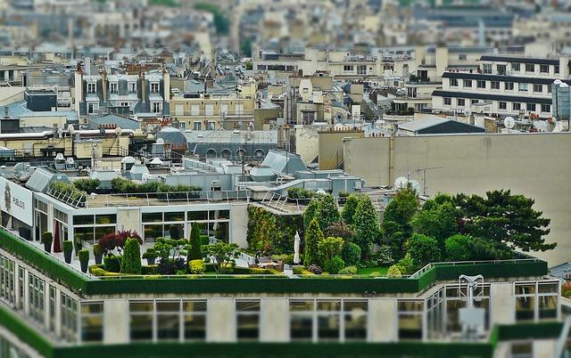 Comment construire une piscine et un jardin  sur une terrasse?