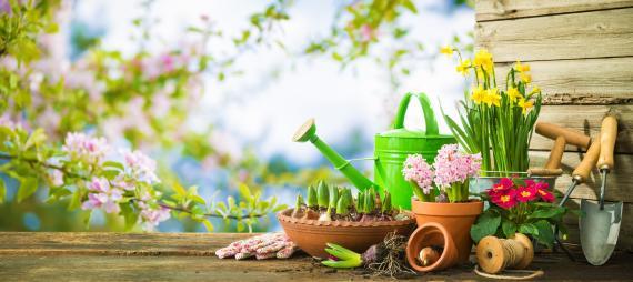 5 choses à savoir autour du jardinage