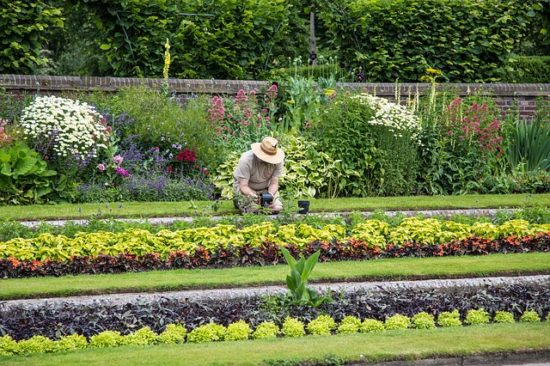 Aménagement de jardin : pourquoi faire appel à un paysagiste ?