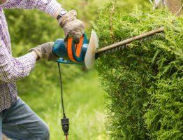 Entretien du jardin: les obligations à respecter