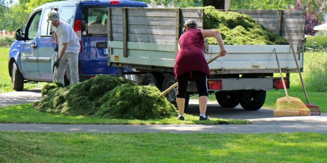 Comment entretenir convenablement votre pelouse?