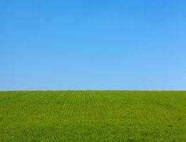 Comment aménager un espace vert?