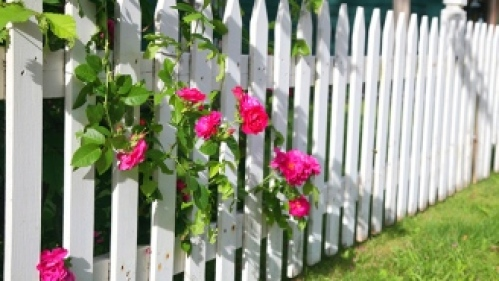 Quel type de clôture pouvez-vous ériger autour de votre potager ?
