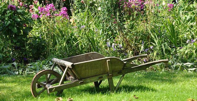 5 conseils de pro pour créer un espace vert agréable