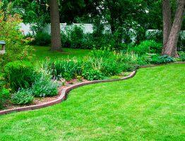 Quels engrais naturels utiliser pour le gazon de votre jardin ?