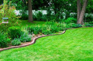 bordure_jardin