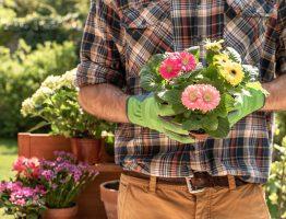 Entretien d'un espace vert : pourquoi recourir à un paysagiste?