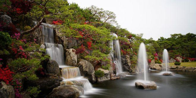 Comment créer les jardins de vos rêves ?