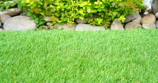 Quel type de gazon installer dans votre jardin ?