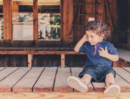 Construire une véranda en bois: avantages, type de bois, prix