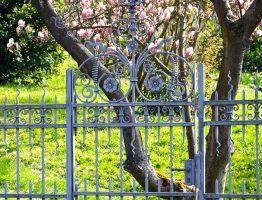 Quelles installations pour garantir l'intimité de votre jardin?